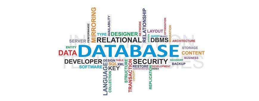 Technology / Data Base Manager/Technology
